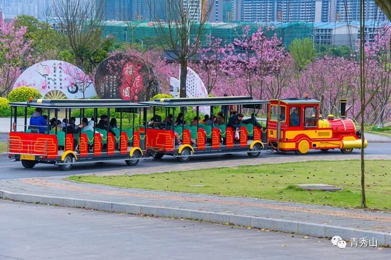 开往春天的青秀山小火车发车