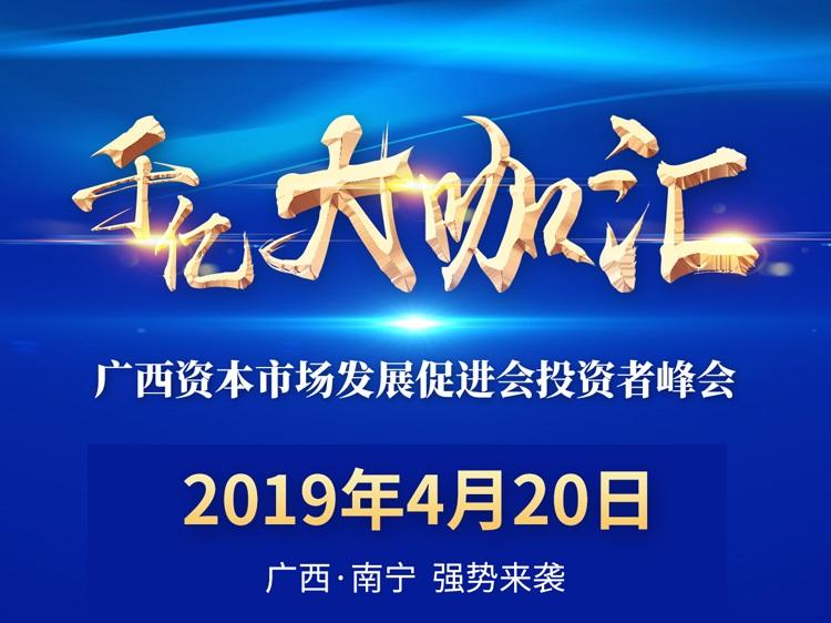 广西资本市场发展促进会投资者峰会即将召开