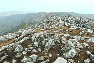 广西石漠化土地减38.72万公顷 治理成效稳居全国第1