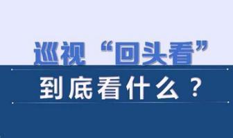 """广西:全力整改中央环保督察""""回头看""""反馈问题"""