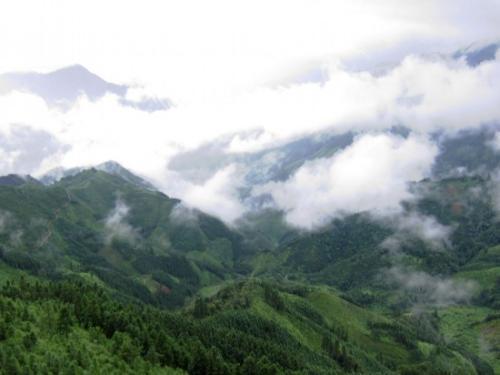 国务院同意调整九万山等6处国家级自然保护区范围
