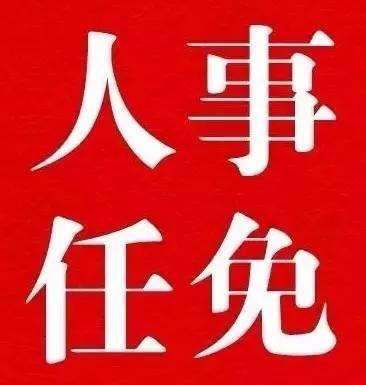 权威发布|广西壮族自治区人民政府发布一批人事任免