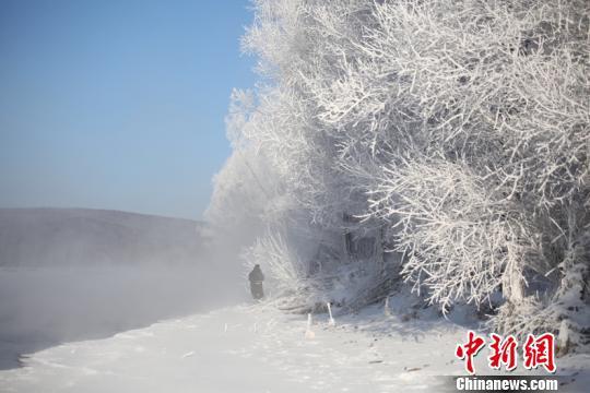 """""""中国最冷小镇""""的雾凇美景。(冯宏伟 摄)"""