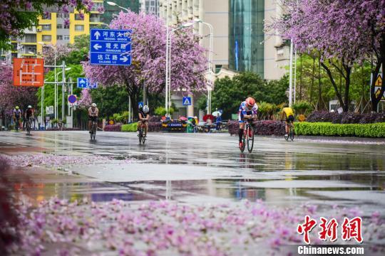 运动员骑着自行车在柳州市紫荆花城角逐。 王以照 摄