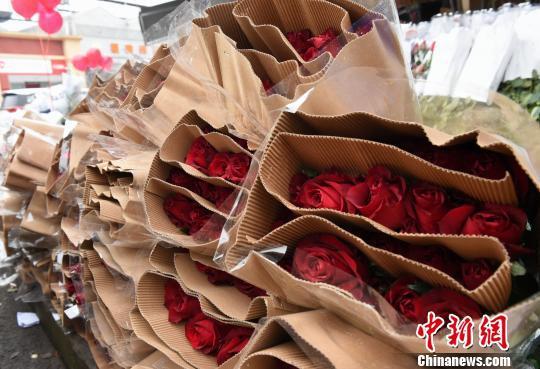 图为鲜花市场的商家提前备好玫瑰花迎接情人节。 周毅 摄