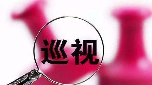 广西公布十一届区党委第五轮巡视整改情况