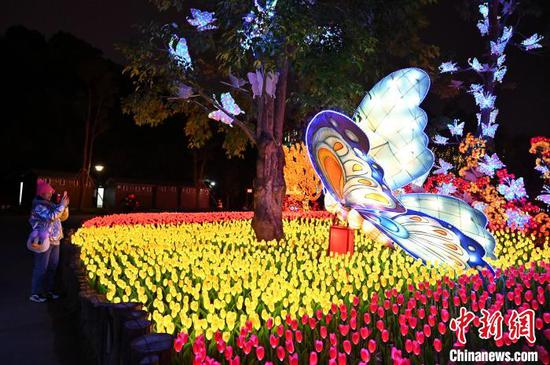 广西南宁青秀山迎新春大型灯展开放 游客穿梭灯海