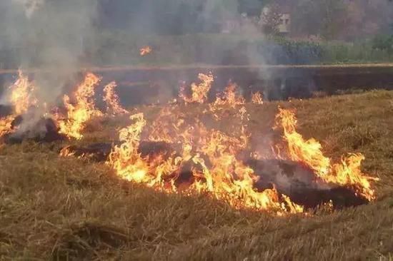 通报批评!南宁机场周围出现10处以上秸秆露天焚烧火点