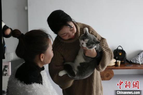 拍摄时,宠物摄影师不断安抚猫咪情绪,使其配合拍摄。 林馨 摄