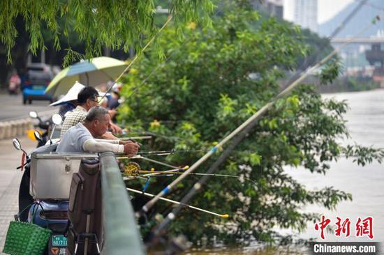 柳州洪水漫上道路 市民钓鱼捞鱼取乐(图集)