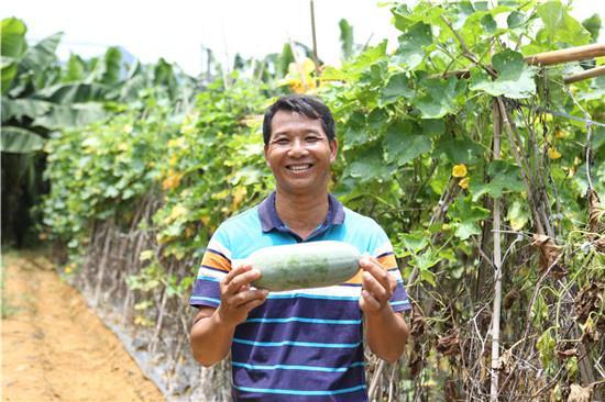 新立村村民周文革拿着自己丰收的冬瓜。广西新闻网记者 王希摄