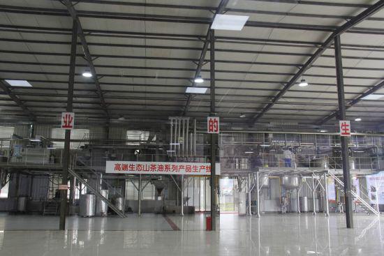 高端生态山茶油系列产品生产线。朱晓玲摄
