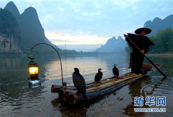 (一位老人带着鱼鹰在阳朔漓江上打渔。新华社记者 周华摄)