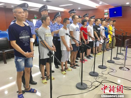 图为11名被告人。 钟欣 摄