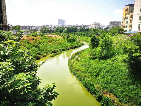 """创建示范城市 南宁市开展水环境治理""""百日攻坚战"""""""