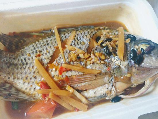 学生领到的鱼