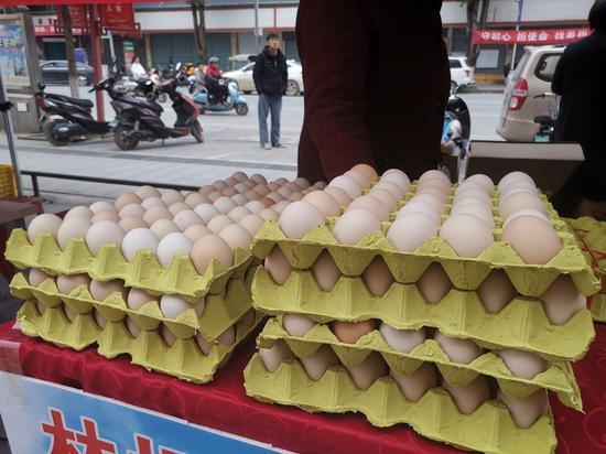 生态健康的土鸡蛋