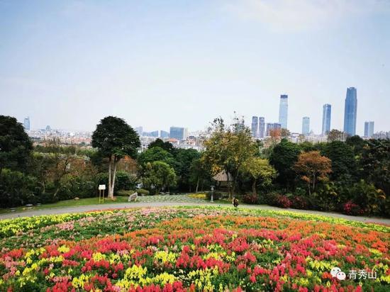 复苏|南宁市这些A级景区已开放 一起踏青赏花吧