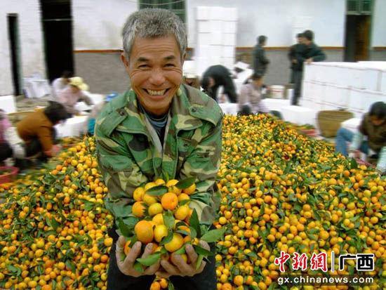 图为果农喜获丰收,乐开怀。谢次娣 摄