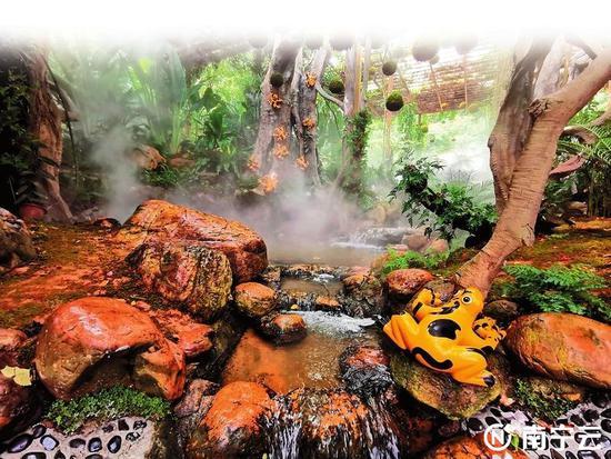 青秀山荫生植物园溪水潺潺、水雾如梦似幻,仿佛仙境一般