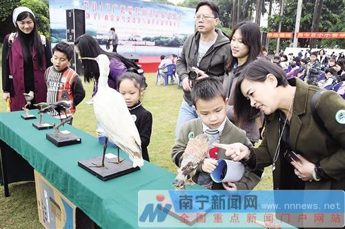 看标本识鸟类,展台吸引了不少青少年。记者宋延康摄