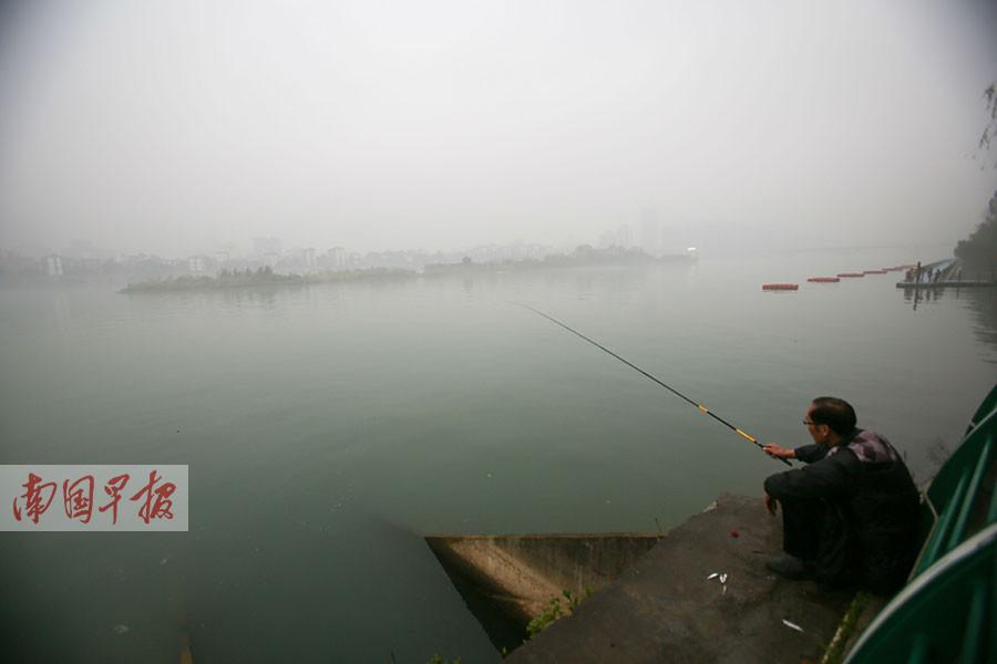 3月中旬一个烟雨朦胧的下午,柳州一市民对着江中若隐若现的萝卜洲垂钓。由于萝卜洲已被划为保护区,普通民众不能随意上岛。