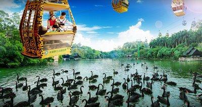 """广州长隆野生动物世界空中缆车全线免费,轻松""""瞰""""尽全球国宝"""
