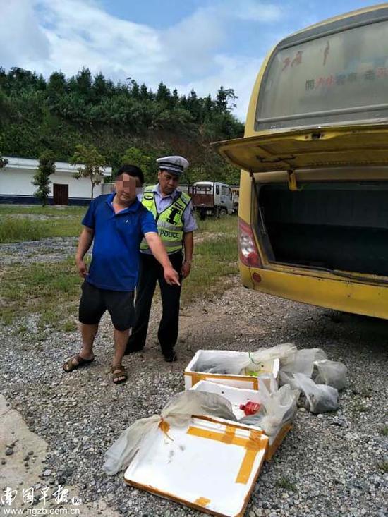 ▲交警部门查获的两箱活蛇。桂平市交警大队供图