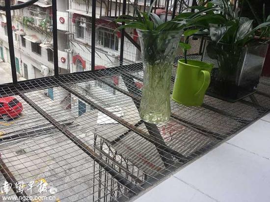 ▲一些安装人员表示,防盗网上可铺设一些细网纱增强安全性能。南国早报记者 陆旺摄