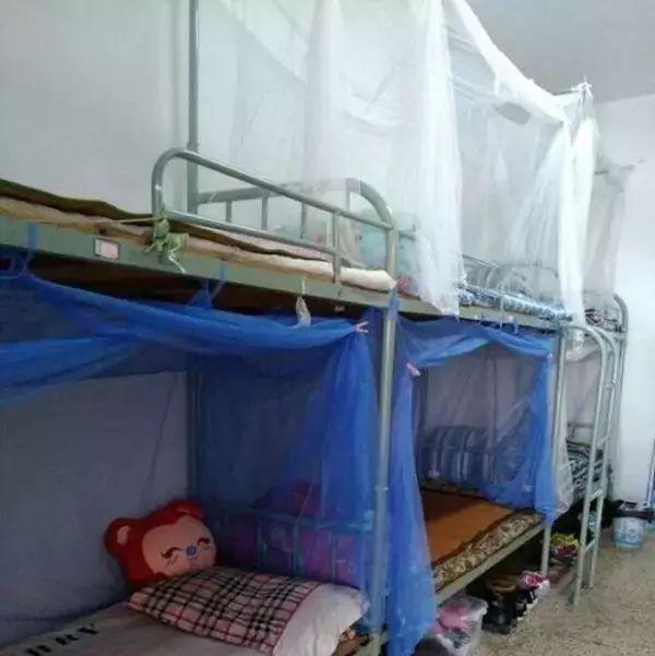 痛心!21岁大四女生寝室内摔倒身亡 疑因从床铺摔下