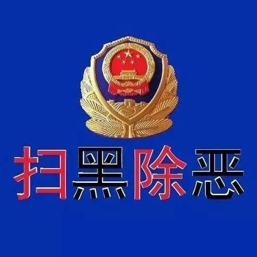 上林警方上半年打掉3个涉恶团伙 共破获涉恶案件22起