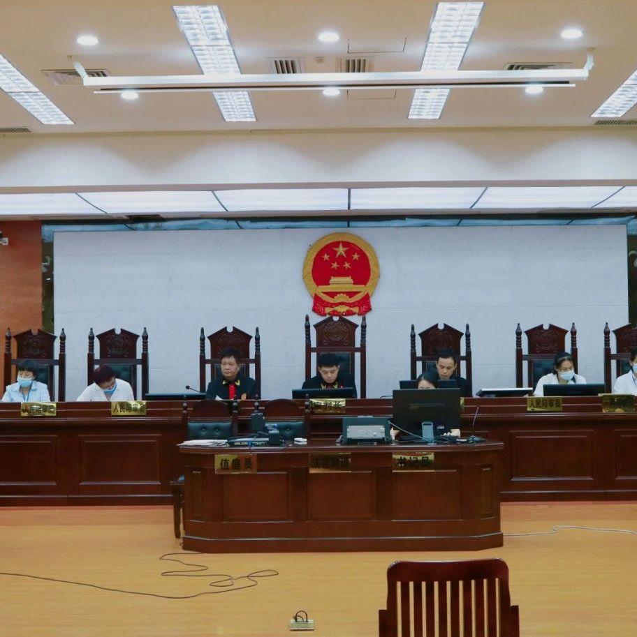 南宁小伙跨省邮寄出售3只乌龟 被追究刑事责任并赔礼道歉
