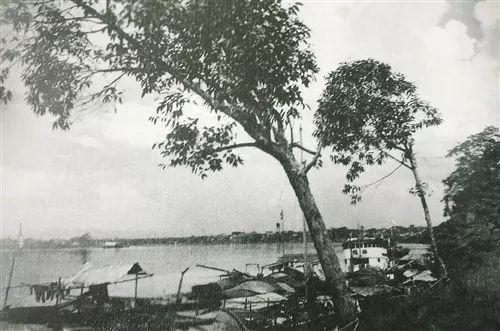 �Oy_秦为桂林郡地,驩水在县北,本牂牁河,俗呼郁状江,即骆越水也,亦名温水