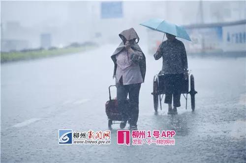 5月7日暴雨的场景(黎寒池 摄)