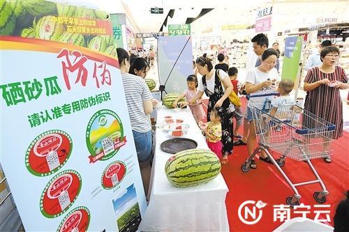 在宁夏·中卫香山硒砂瓜南宁推介会现场 ,市民正在品尝美味的西瓜。记者 宋延康 摄