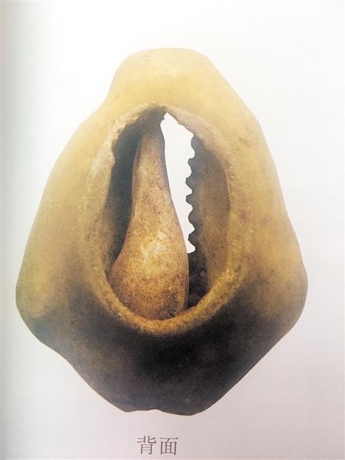 广西岩洞葬出土的贝币