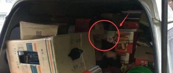 危险!南宁这个装满货物的车厢内居然藏着一名男子