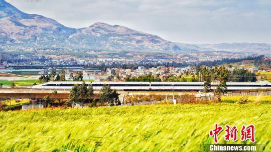 图为一列动车组列车经过云南的稻田(资料图)。 张伟明 摄