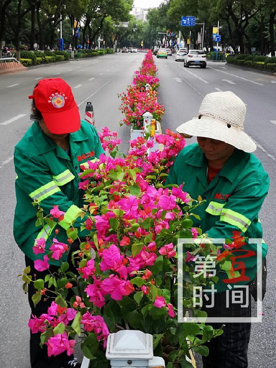 """夹道欢迎!桂林40余万盆鲜花造景迎接""""环广西"""""""