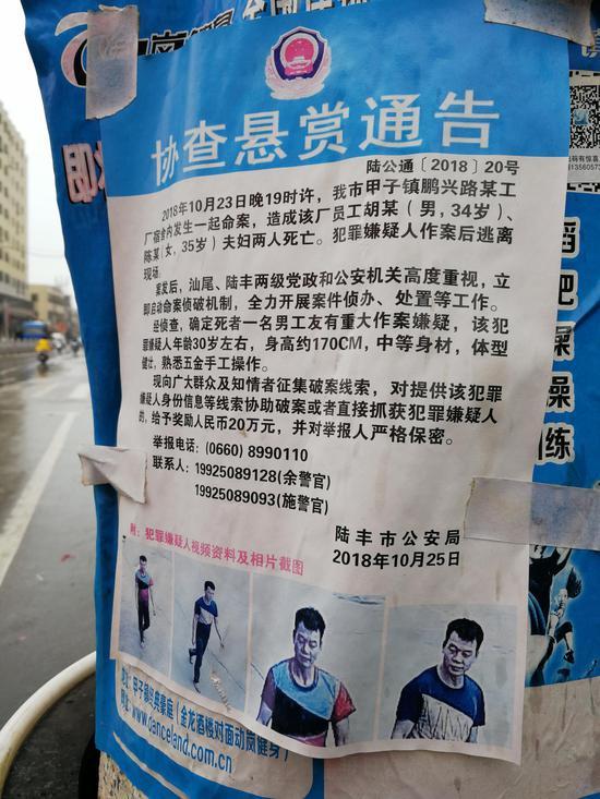 广东省陆丰市甲子镇,贴在马路边电线杆上的协查悬赏通告。澎湃新闻记者 朱远祥 摄