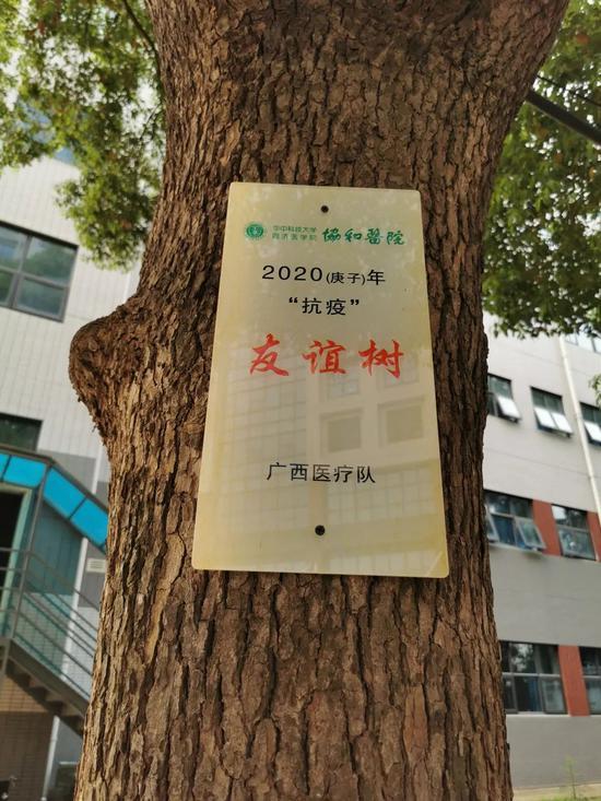 """广西瑞康医院战""""疫"""":在协和西"""
