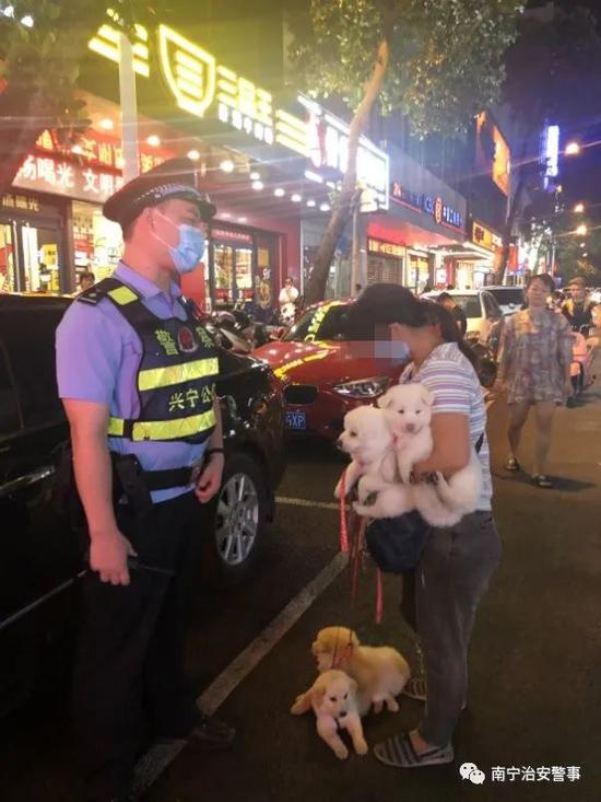 已有多人被处罚!南宁警方开展不文明养犬整治行动
