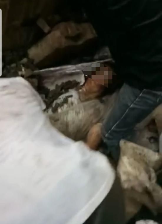 广西暴雨一村庄房屋倒塌致1死3伤 死者为8岁女童