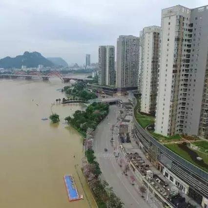 今年柳州或现85米洪水 局部极端暴雨洪水可能性较大