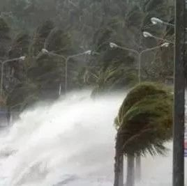 台风来了 我们应该怎样科学应对?这八点很关键