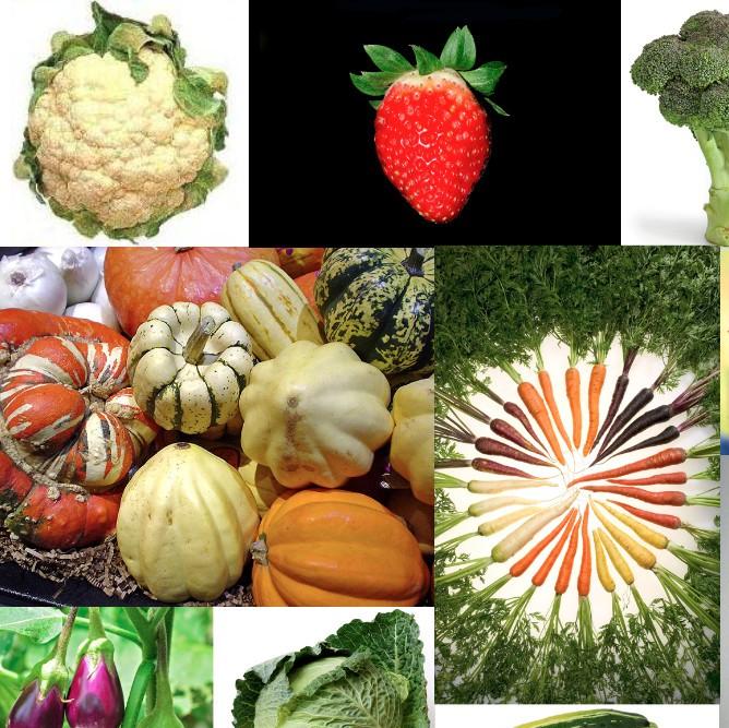 这10种果蔬真能降低乳腺癌风险!已被证实