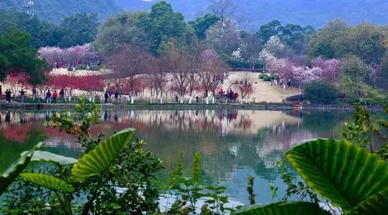 好玩!柳州将打造最比特棋牌美旅游道路 串起五大景点