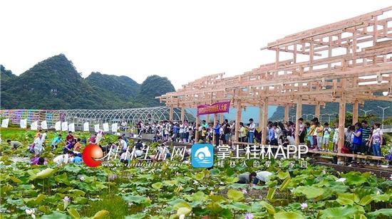 去年7月,前去陶家村委赏荷的游人如织。伴随着桂阳公路全面竣工,陶家村人对发展乡村旅游更加充满信心。(大埠乡供图)