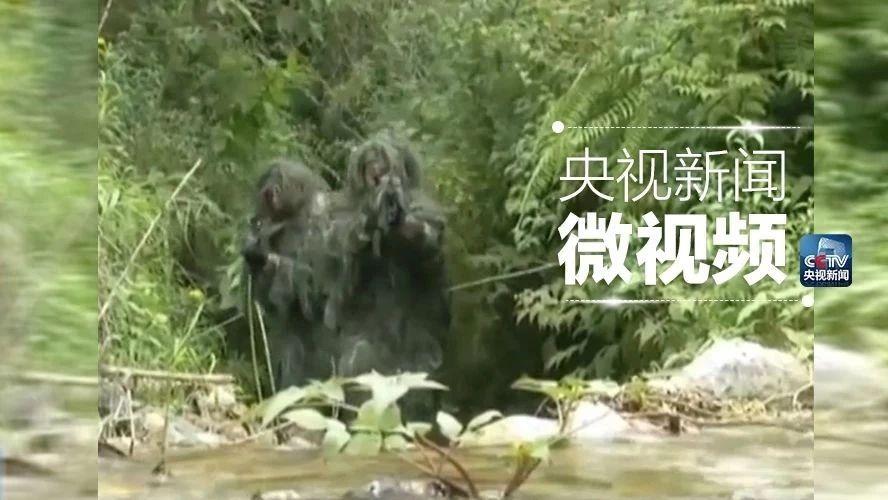 """在云南的丛林里生吃蚯蚓、蛇肉 他们不是""""野人"""""""