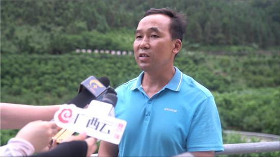 百坭村村民致富带头人班统茂。广西新闻网记者 林亮摄